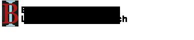 Bonini-Logo-WideLarge